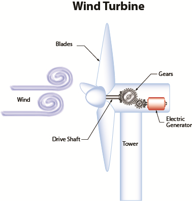 How Does a Wind Turbine Generate Electricity
